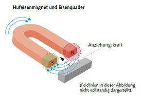 Hufeisenmagnet-Anziehungskraft -  (C) Wolfgang David