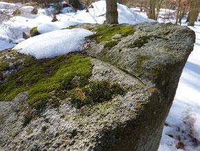 Schälchen und Spaltrinne am Wächterstein