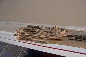 ©Sentri Tech, huisserie dévorée par les termites