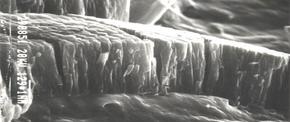 Hartstoff der I. Generation TiN/TiCN/TiN (abgeschieden mittels PVD-Verfahren).