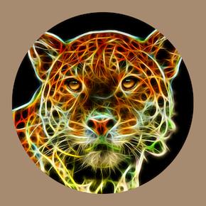 Schamanische Ausbildung Medizinrad, Westen, Archetyp Jaguar
