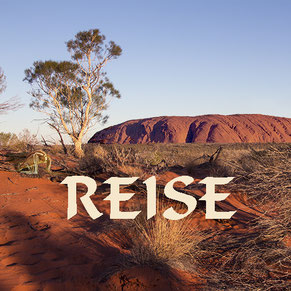 Känguruh Uluru Ayers Rock Australien