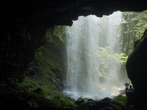 裏から眺める新滝。豪快な水音と水しぶきを浴びる