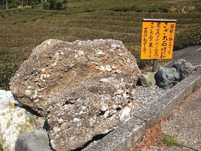 石灰質の作用によってコンクリート状に固まったさざれ石