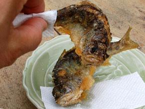 がんだて茶屋のあまご天ぷら。塩を振って頭からガブリ