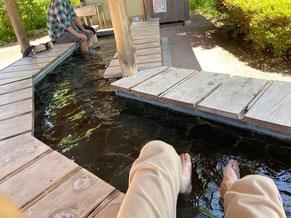 無料の足湯でまったり。泉質はぬるっとした強アルカリ性