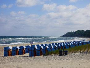 Strandkörbe am Strand Ostseebad Rerik- Lerne jetzt surfen!