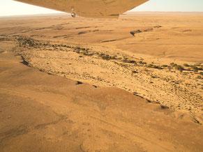 Namibwüste, Namibia, Foto: Ria Henning-Lohmann