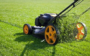 Rasenmäher Arbeiten
