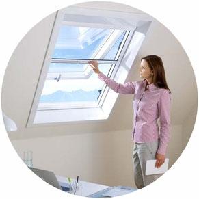 Fliegenschutz für Dachfenster von Velux, Roto, Brass
