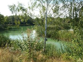 Landschaftsschutzgebiet Erdekaut - ehemaliges Abbaugebiet - Bärbel Rudolph-Leible
