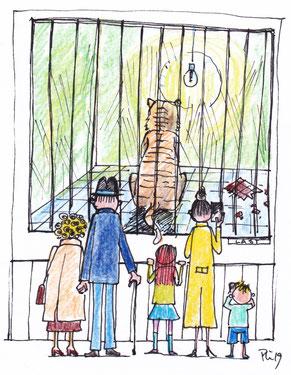 EinTiger sitzt mit dem Rücken zu den Zoobesuchern in seinem Käfig, in dem eine Glühlampe leuchtet. Die Wände sind zerkratzt. Auf den Fliesen liegt eine angebissene Tafel Schokolade.
