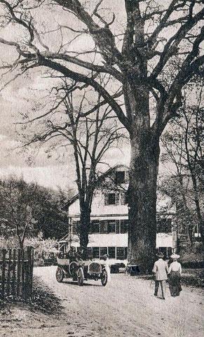 Jägerhaus mit großer Eiche, Postkarte um 1905 (Gebrüder Metz, Tübingen)