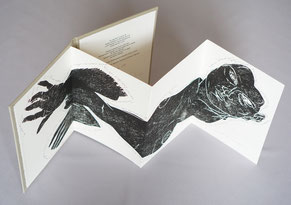 Editions Bernard Dumerchez Editeur Noëlle Chatelet Michael Bastow Leporello