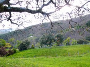 La vue depuis le hameau de Conches à St-Frézal de Ventalon