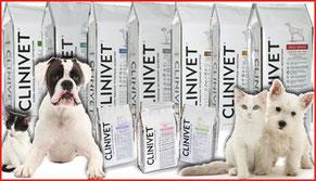 clinivet chien et chat