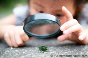 Energie-Erlebnis-Fahrrad mit Zubehör