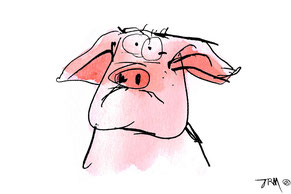 Cochon assis, dessin à la plume, encre noir