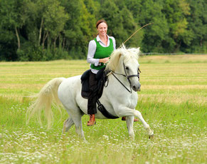 Pferdeshooting - Photography - momente-sammeln.de