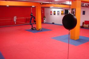 Boxkeller mit Sandsäcken und Boxring. Raummiete möglich.