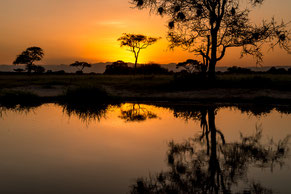 Tansania, landscape, Tarangire, Ngorongoro, Kilimanjaro