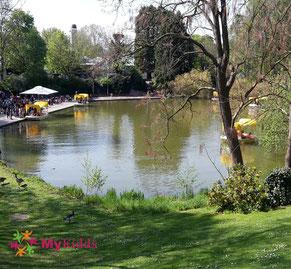 See im Luisenpark in Mannheim