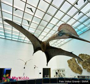 Flugdinosaurier im Naturkundemuseum Karlsruhe