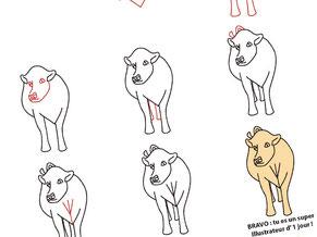Image d'aperçu du tutoriel pour apprendre à dessiner une vache Charolaise