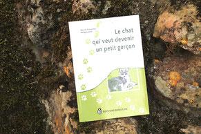 Le livre Le chat qui veut devenir un petit garçon posé sur un tas de pierres