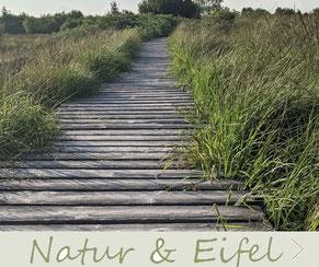 Nationalpark Eifel Hohes Venn