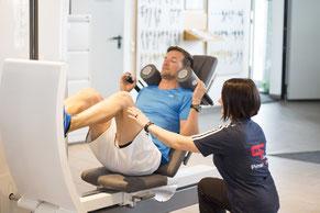 verden fitness studio fitnessstudio training blender personal kurse frei krause kurs angebot Zirkel