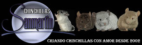 Chinchillas San Martin