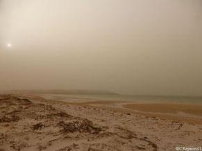 Mauritanie Découverte Du Banc Darguin Vve écotourisme