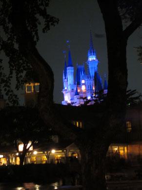 ライトアップされたシンデレラ城、きれいでした!