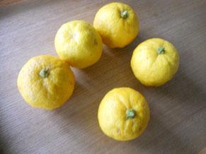 久しぶりに会った友人が、ご実家で採れた柚子をプレゼントしてくれました。柚子風呂?迷ったけれど、せっかくの完全無農薬、蜂蜜につけていただきます。