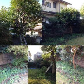 植木/庭木剪定お気軽にご依頼頂くことで見違えるほどきれいに!!お庭の困ったにご対応