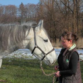 Pferdeosteopathie, Rani Tiertherapie, Rani Pauly