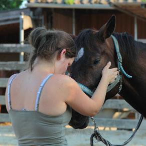 Therapeutin am Pferd, Pferdeosteopathie, Pferdephysiotherapie, Rani Tiertherapie, Rani Pauly