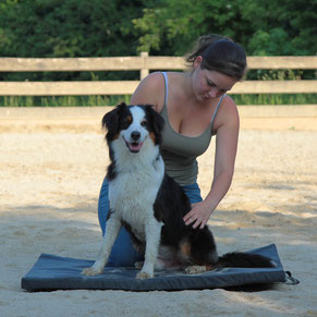 Therapeutin am Hund, Hundeosteopathie, Hundephysiotehrapie, Behandlung, Rani Tiertehrapie, Rani Pauly