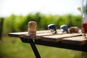 VinoLoire - Vincent Delaby - Excursions privilégiées dans les domaines vignobles du Val de Loire - Visites privilégiées à la journée