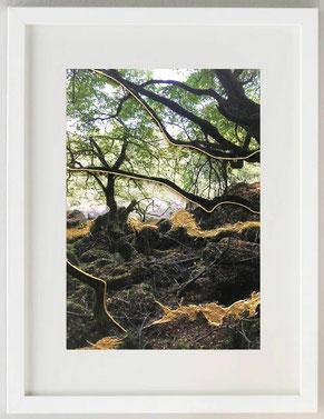AL RIPARO, 2020, Fotografia con inserti materici e colore acrilico, 20 x 30