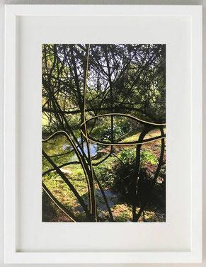 TRA I RAMI, 2020, Fotografia con inserti materici e colore acrilico, 20 x 30