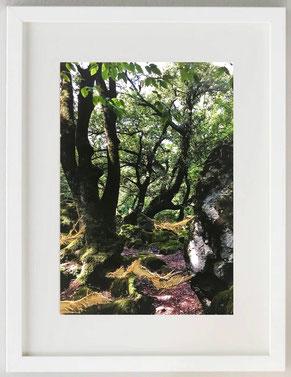 PASSEGGIATA, 2020, Fotografia con inserti materici e colore acrilico, 20 x 30