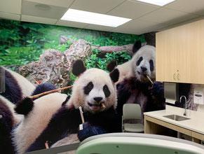 Pandas Mural