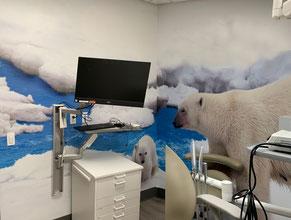 Polar Bears Mural