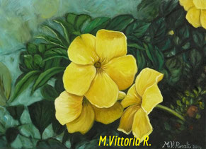 allamanda cathartica, oil on canvas, cm 25x35,  2014