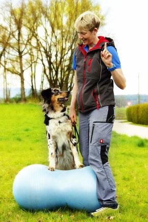 Dr.Laura Klingseisen Bruun mit Hund auf Erdnussball bei Physiotherapie