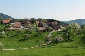 Südschwarzwald