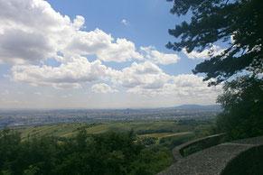 Wien - Blick vom Leo