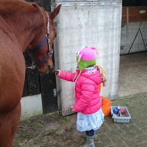 Kindje maakt rustig kennis met het paard.